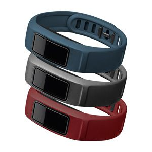 vivofit 2 Accessory Bands Small (Burgundy/Slate/Navy)